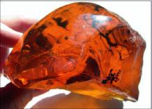 Beautiful Dominican amber