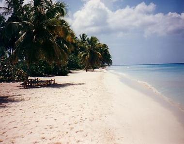 external image beach-dominican-republic.jpg