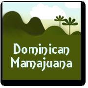 Real Dominican Mamajuana