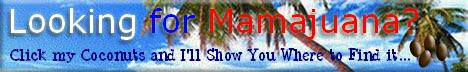 Where to buy Mamajuana