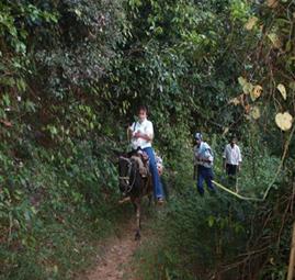 horse riding dominican republic